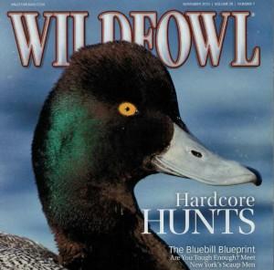 Waterfowl-Magazine